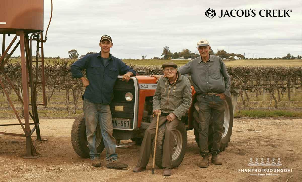Những người nông dân trồng nho như một phần của gia đình