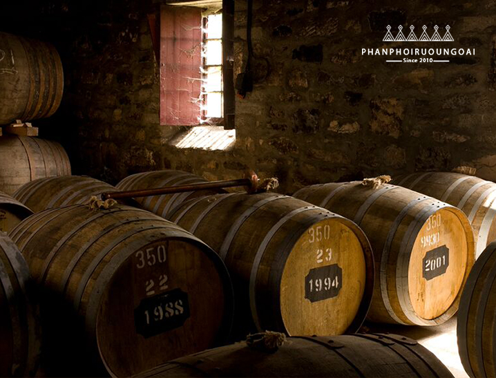 Hầm rượu lưu trữ rượu Label 5