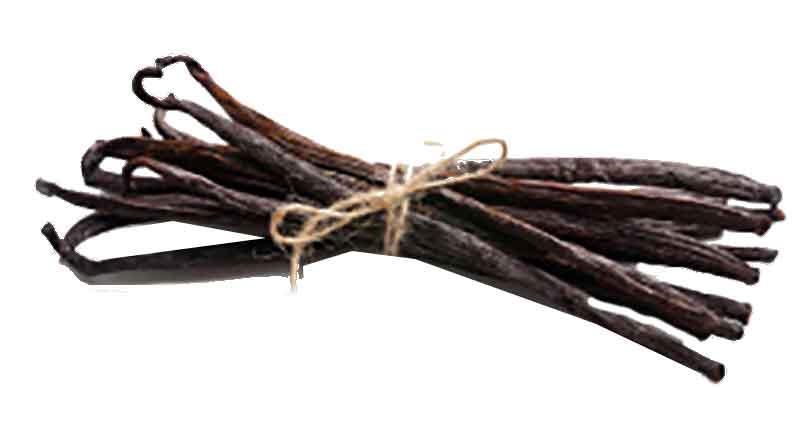 ĐIểm nhấn của Rượu Macallan Quest chính là hương Vanilla - The Macallan