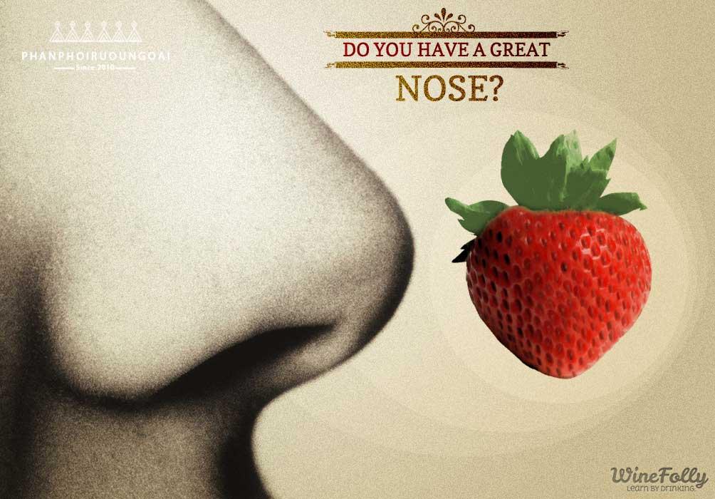 Mũi của chúng ta làm sáng tỏ các mùi khác biệt