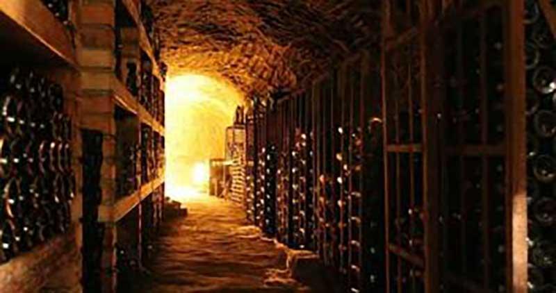 Nhiệt độ để có thể bảo quản rượu vang một cách tốt nhất