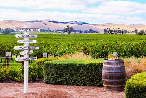 Vùng rượu vang Barossa nổi tiếng của Úc