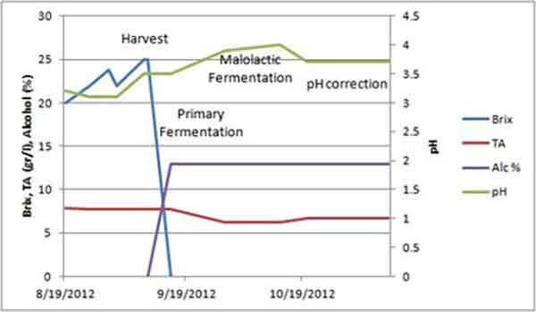 Biểu đồ về độ chua của nho rượu