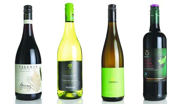 Các loại rượu vang Organic xu hướng mới