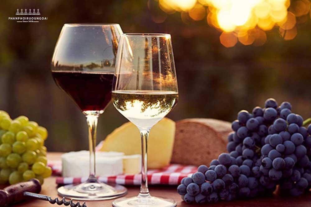 Rượu vang rất tốt cho sức khoẻ nếu biết thưởng thức chừng mực