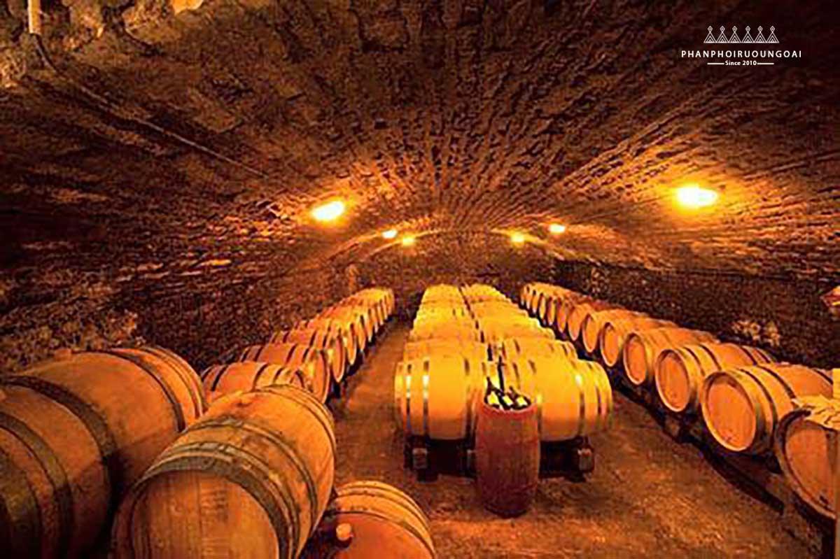Vì sao các chai rượu vang đắt tiền thường được ủ trong thùng gỗ sồi