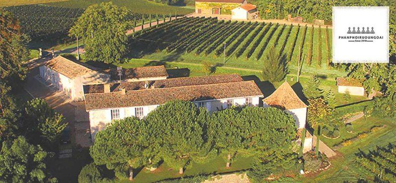 Thung lũng Maipo thiên đường của các nhà làm rượu vang