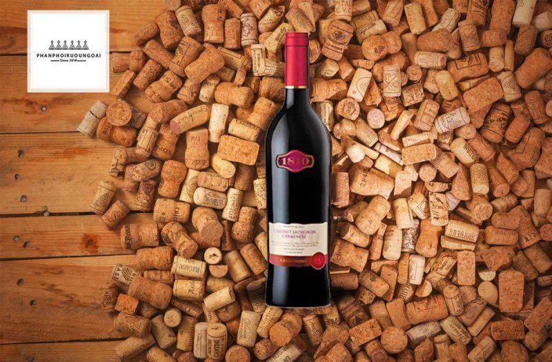 Rượu Vang Casa Donoso 1810 và nút chai