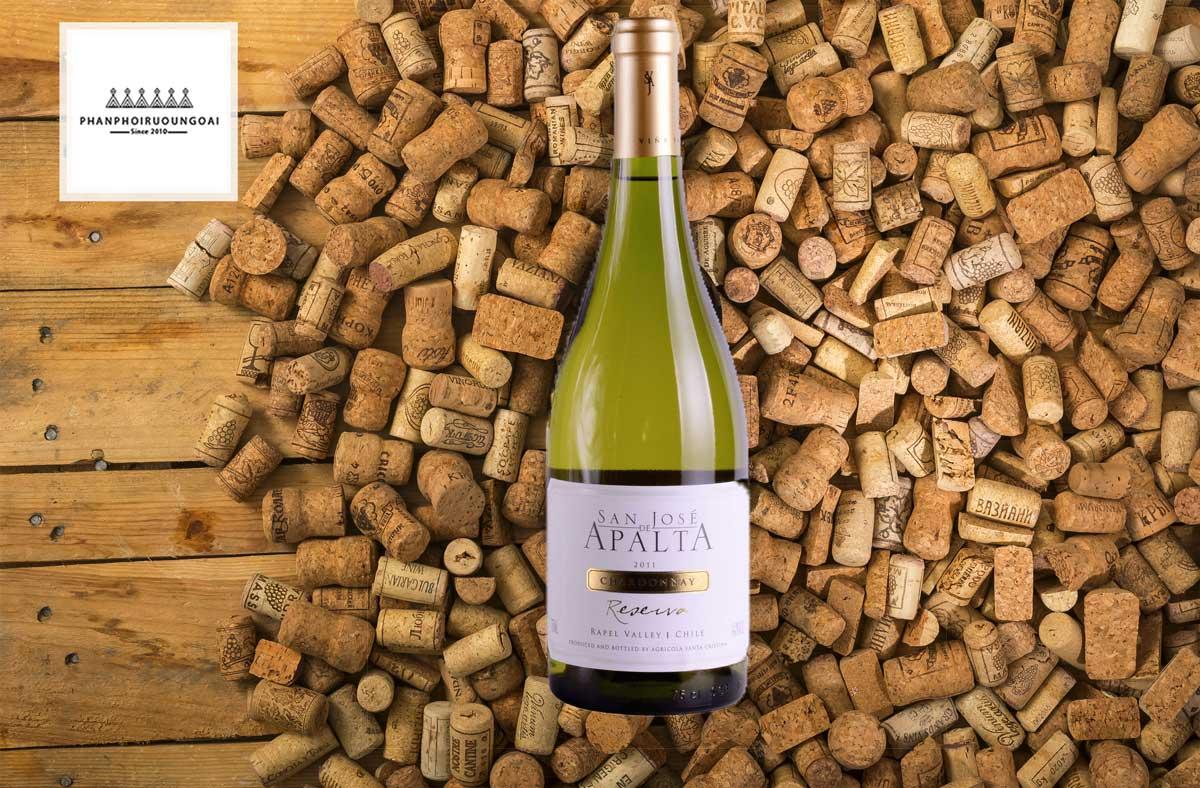 Rượu Vang San José de Apalta Reserva Chardonnay và nút chai
