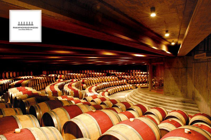 Hầm ủ rượu vang của nhà Montes