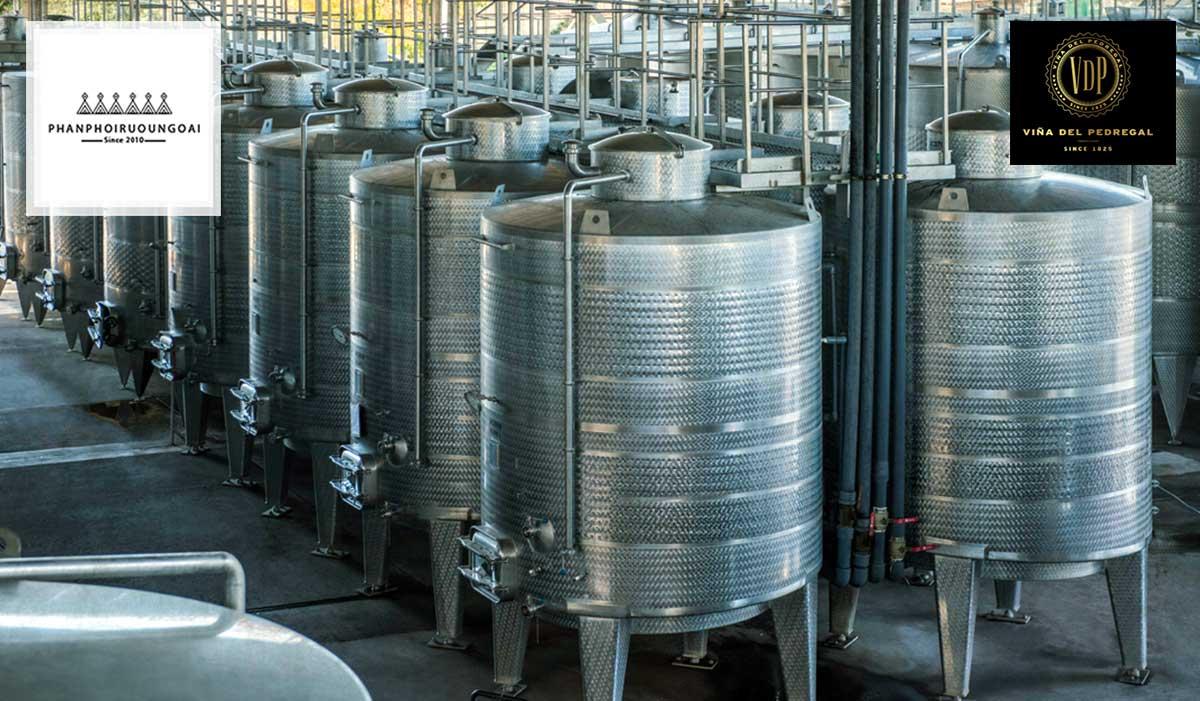 Rượu vang G7 được lên men trong các thùng tôn thép không gỉ