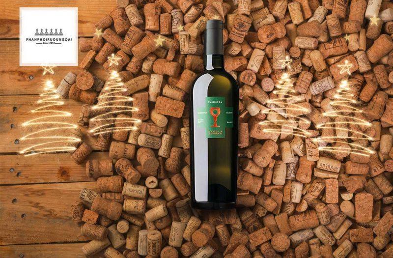 Rượu vang Schola Sarmenti Candora Chardonnay và nút chai