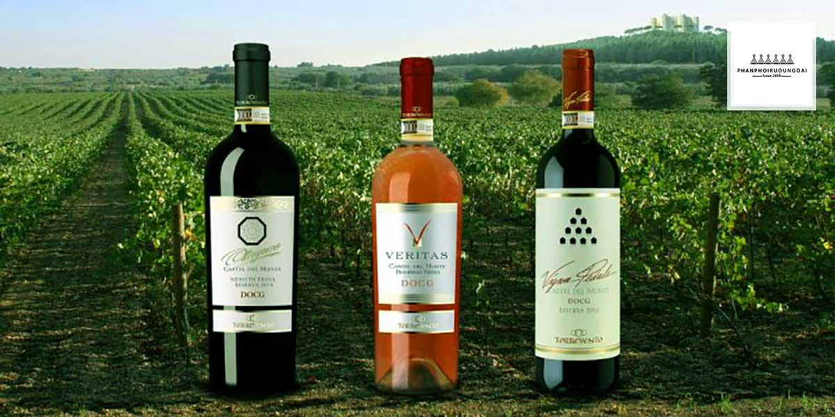 Những loại rượu vang thuộc phẩm cấp DOCG