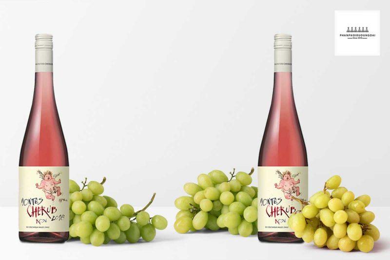 Chai Rượu vang Chile Montes Cherub - Vang Hồng