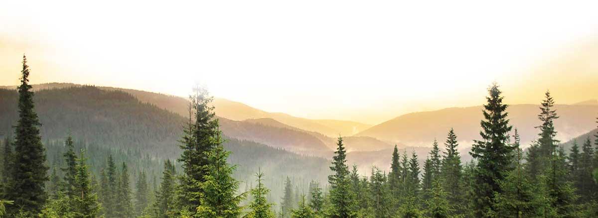 Hình ảnh đẹp như tranh của thung lũng Atata Valley