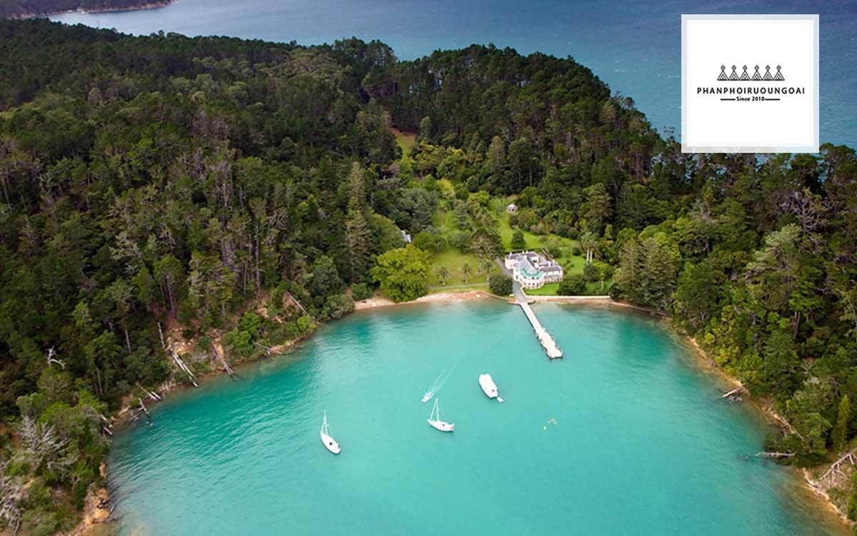 Khu vực Matakana của New Zealand