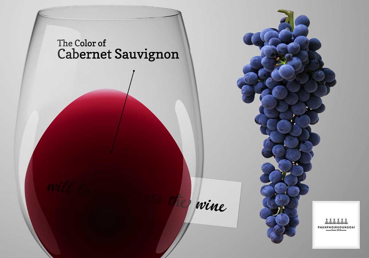 Màu sắc của rượu vang làm với giống nho Cabernet Sauvignon