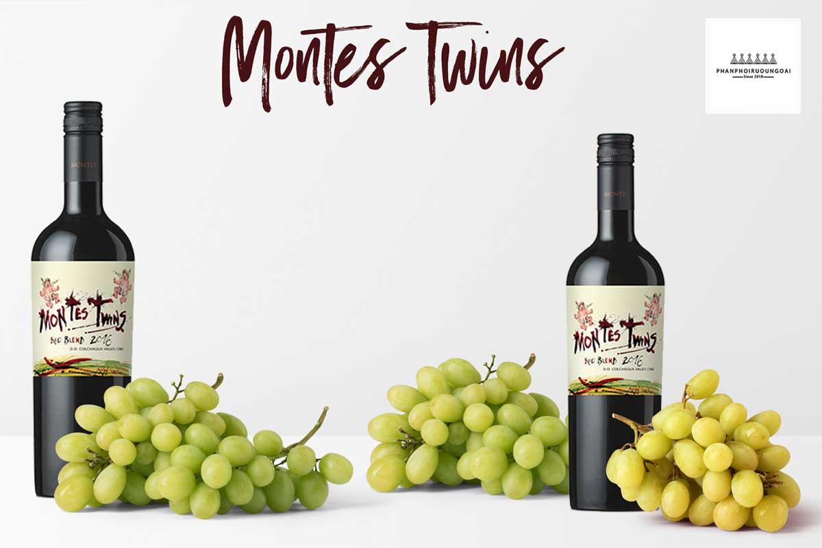Rượu Vang Montes Twins siêu phẩm từ 4 giống nho Cabernet Sauvignon , Syrah , Tempranilo , Carmenere