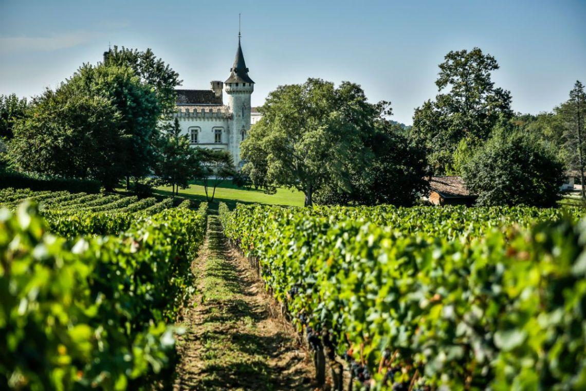 Lâu đài và vườn nnho Bordeaux