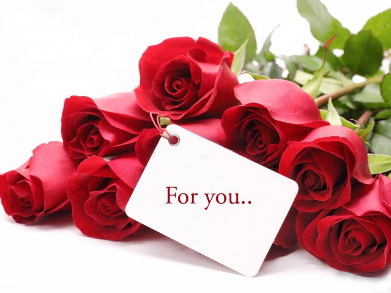 Những đoá hồng dành tặng người phụ nữ ngày 20 tháng 10