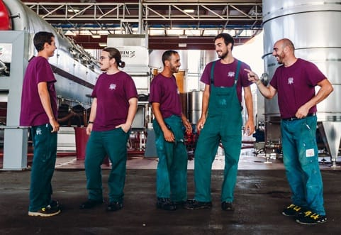 Đội ngũ sản xuất rượu vang King Ruvaes