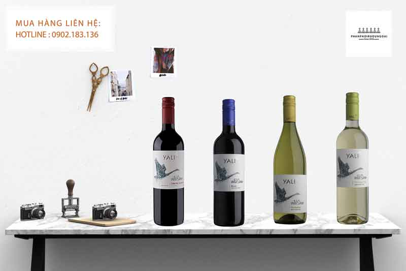 Các loại rượu vang Chile giá rẻ Yali Wild Swan 2020