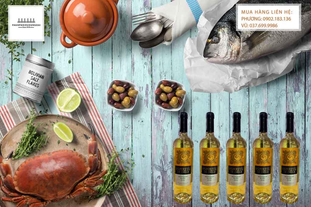 Rượu Vang Chile Espiritu de Chile Sauvignon Blanc và hải sản