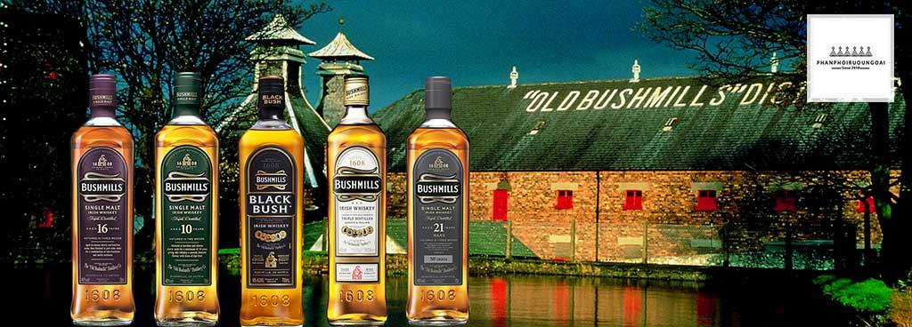 Các loại rượu Bushmills cung cấp bởi Rượu Song Long