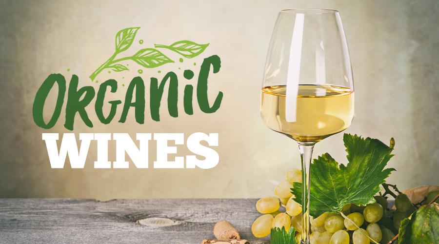 Rượu vang Organic còn chỗ trong thị trường Việt Nam