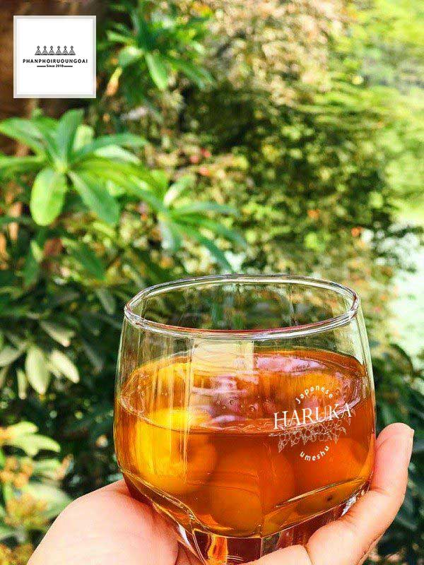 Thưởng thức rượu Mơ Haruka mang lại tác dụng tốt cho sức khoẻ