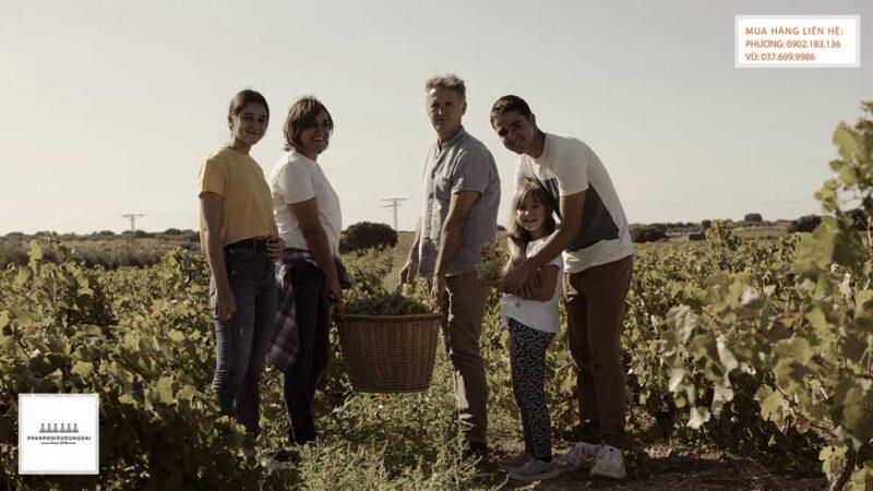Gia đình Bodegas Verduguez và sứ mệnh làm rượu vang truyền qua nhiều thế hệ