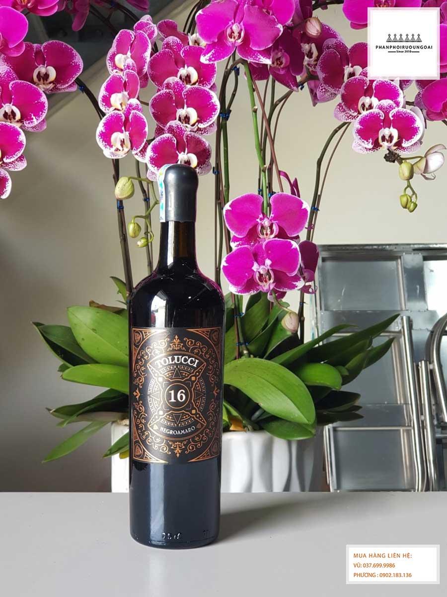 Hình ảnh thực tế chai rượu vang Ý Tolucci Negroamaro Limited 16 độ