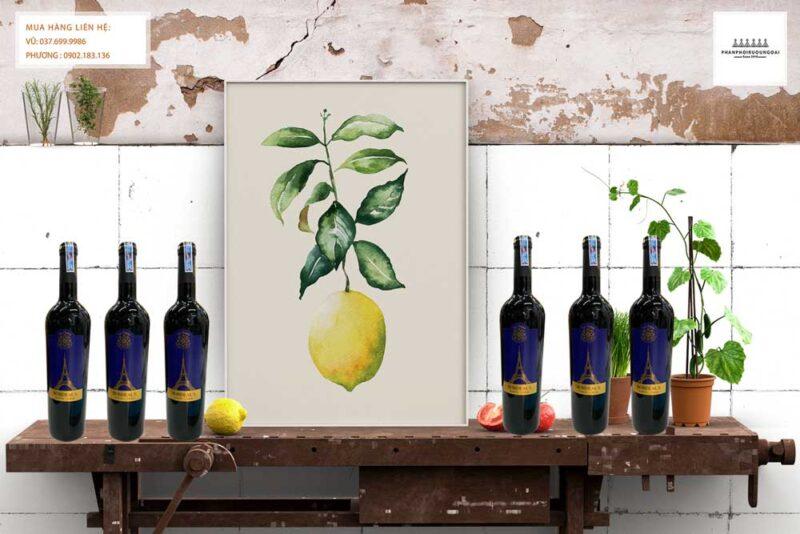 Ảnh Rượu vang Pháp La Chaux Bordeaux cho biếu tặng và thưởng thức tết nguyên đán 2021