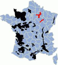 Vùng trồng nho để làm rượu Champagne tại Pháp