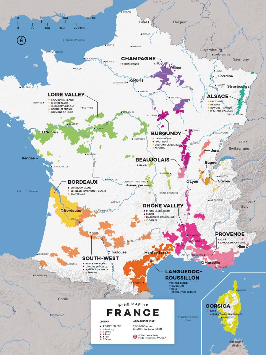 Khám phá bản đồ rượu vang Pháp