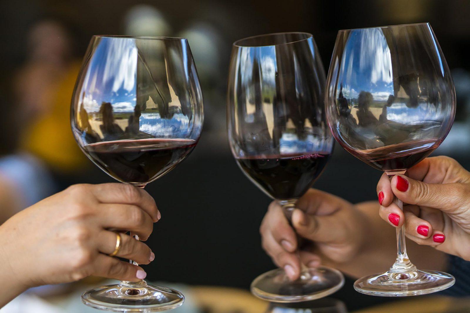 Rượu vang Chile thực sự ngonn khi được chia sẻ và cùng thưởng thức